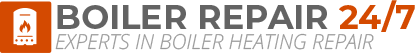 Hither Green Boiler Repair Logo
